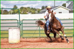 Rodeo Events on EverythingAgricultural.com
